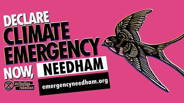 ee-needham-facebook-cover-photo.jpg