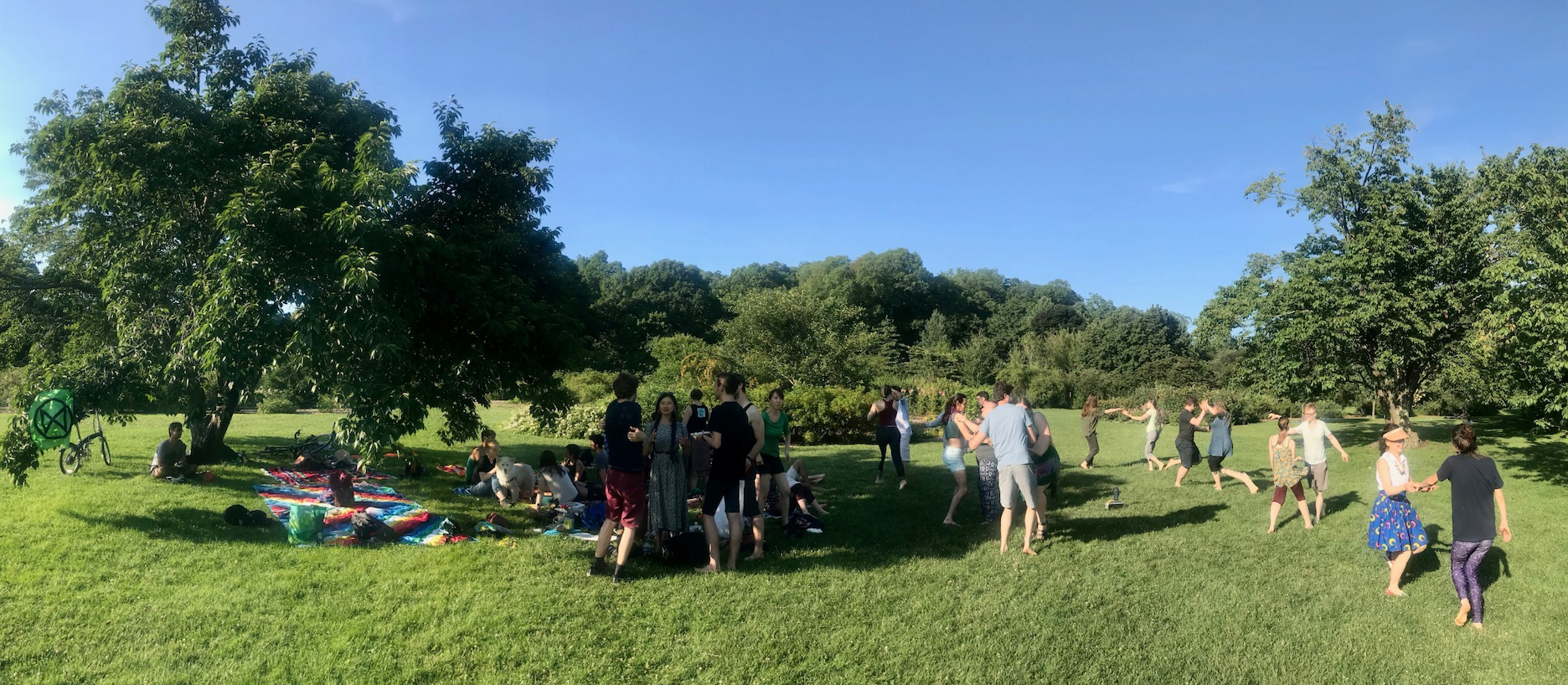 XR and Wandering Fusion Festival dance in the Arnold Arboretum.